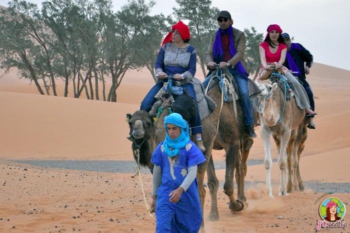 Dromadaire - Conseils pour visiter Marrakech et ses alentours