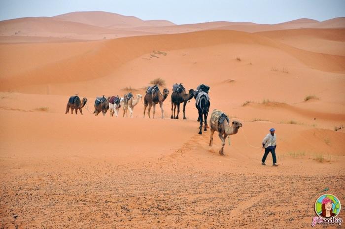 Merzouga - Conseils pour visiter Marrakech et ses alentours