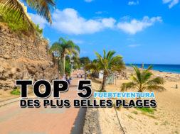 top-5-belles-plages-Fuerteventura-img