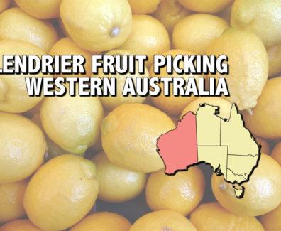 Western-australia-img