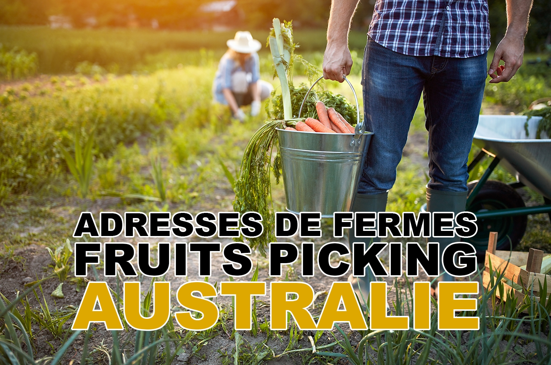 Adresses de fermes pour le fruits picking en Australie