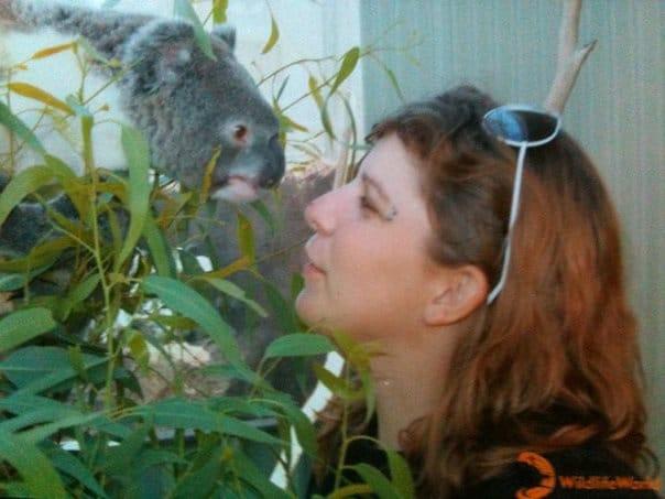 WHV en Australie