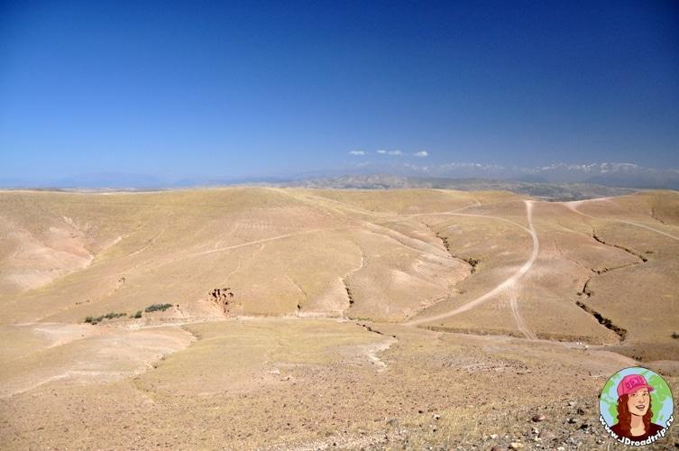 Excursion dans le Haut Atlas - Désert de pierre