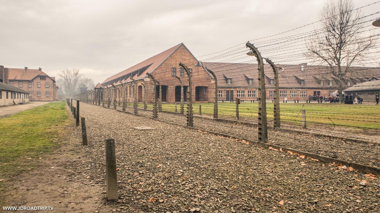 visiter les camps Auschwitz Birkenau