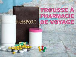 trousse-pharmacie-de-voyage-img