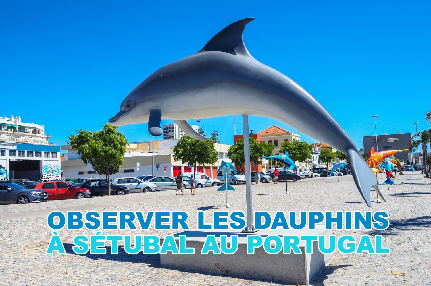 Excursion pour observer les dauphins à Sétubal au Portugal