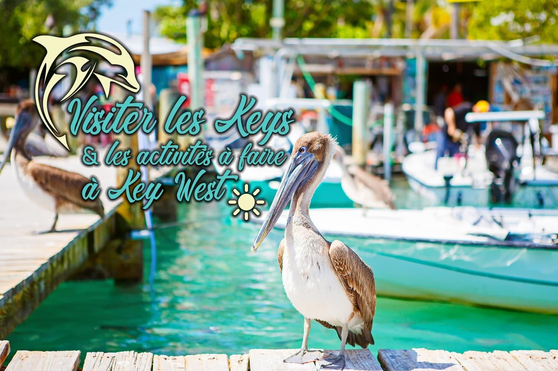 Visiter les Keys et les activités à faire à Key West