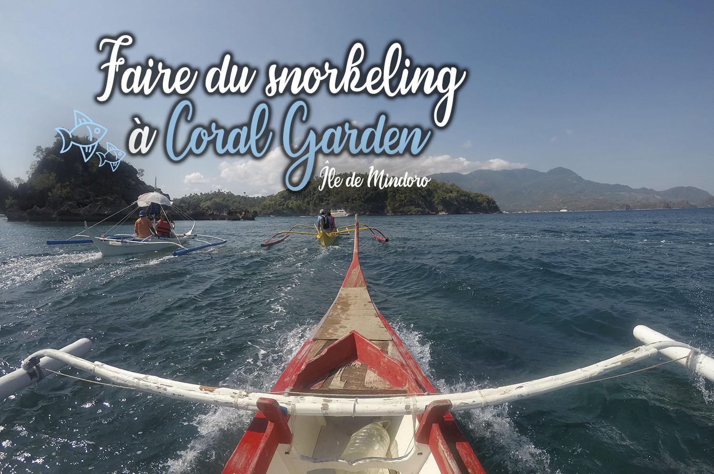 Arnaque du jour, faire du snorkeling à Coral Garden sur l'île Mindoro