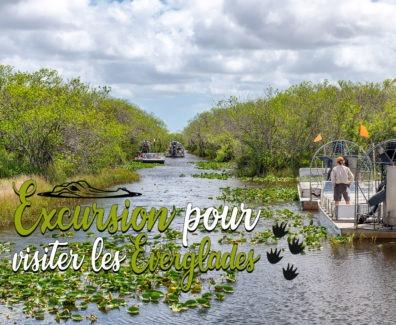 Everglade-img