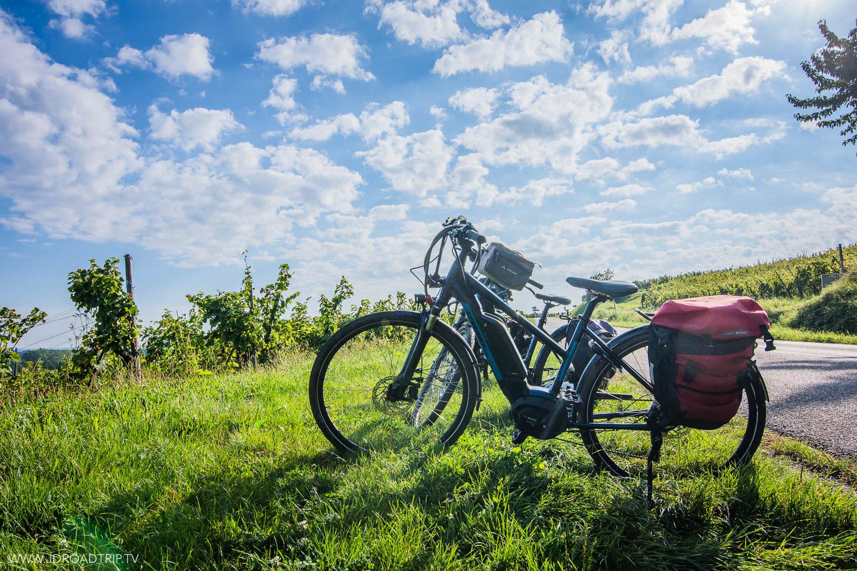 Alsace à vélo - Location vélo Trace Verte